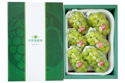 桃太郎ぶどう(4kg箱)