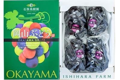 紫玉(2kg箱)