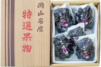 紫玉(3kg箱)