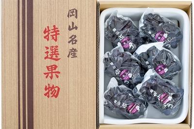 紫玉(4kg箱)