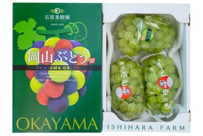 桃太郎ぶどう2房入り 詰合せ(2kg箱)