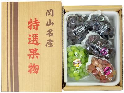 旬のぶどう詰合せ(3kg箱)