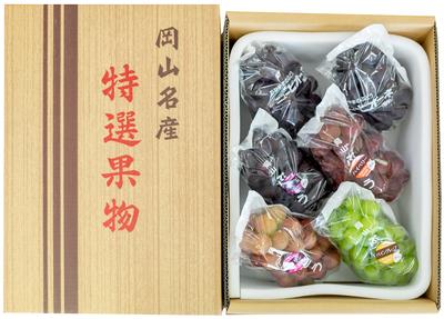 旬のぶどう詰合せ(4kg箱)