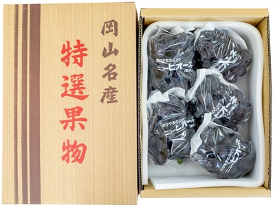 ニューピオーネ(3kg箱)
