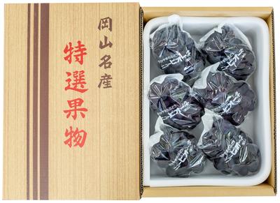 ニューピオーネ(4kg箱)