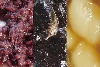 岩手県北上市  展勝地名物 冷凍タレもち(お試し3種セット)