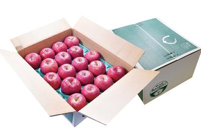 【満杯詰め】「サンふじ」または「サンふじ&シナノゴールド」 6kg箱詰 (目安20玉)