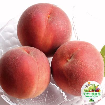 桃「なつっこ」80サイズ梱包