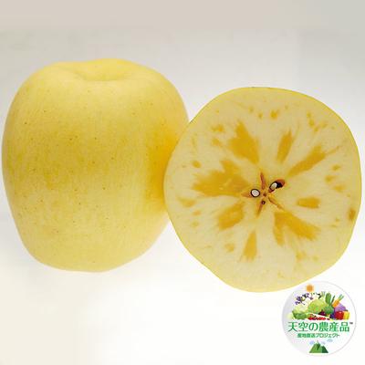 信州りんご「はるか」規格外品