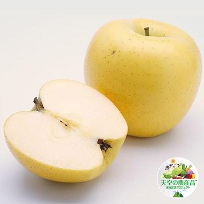 信州りんご「シナノゴールド」約5kg
