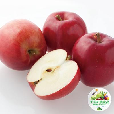 信州りんご「紅玉」
