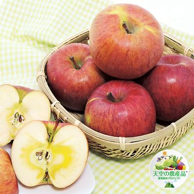 信州りんご「サンふじ」約3kg