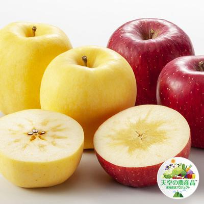 信州りんご 2色セット「はるか」「サンふじ」規格外品
