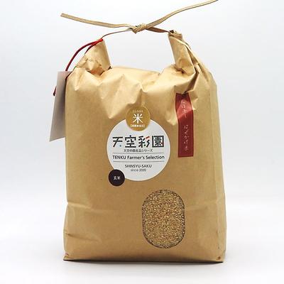 信州安原産「こしひかり」5kg【天日干し はぜかけ米】