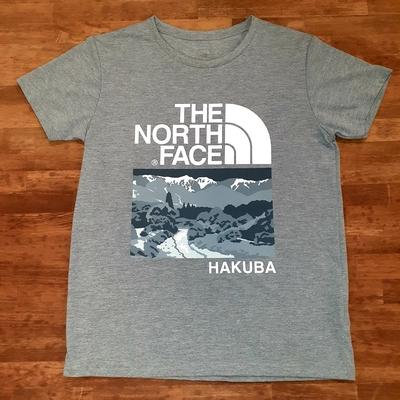 THE NORTH FACE HAKUBAオリジナルTシャツ  レディース グレーLサイズ