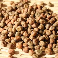 赤えんどう豆(R1・北海道産)30kg袋入