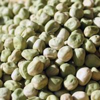 青えんどう豆(H29・北海道産)30kg袋入