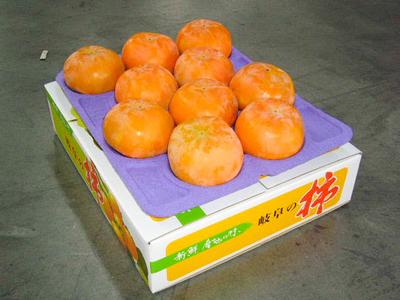 富有柿 - 3L (1段10ケ) 贈答用