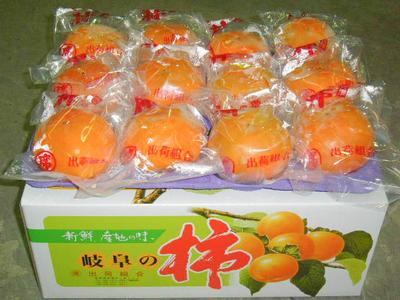 冷蔵富有柿 -  2L (2段24ケ) 贈答用