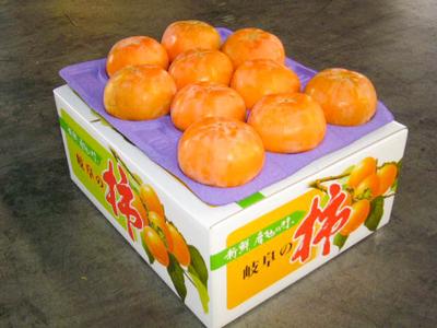 富有柿 - 3L (2段20ケ) 贈答用