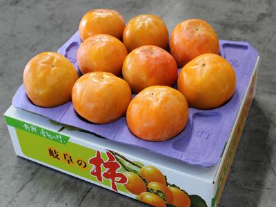 富有柿 - 4L (1段 9ケ) 贈答用